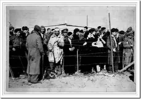 Españoles en el campo de Argelés
