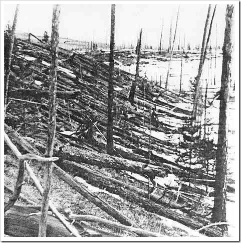 Bosque de Tunguska